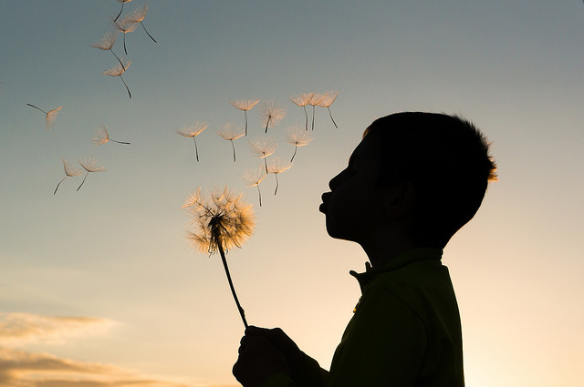 Finding meaning in life and reaching inner peace